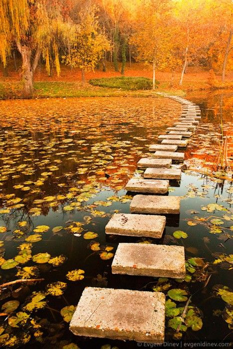 Stepping stones over lake surrounded with autumn trees