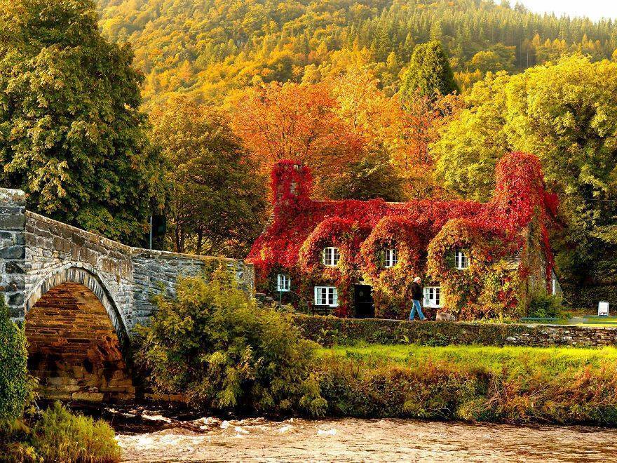 Stone bridge and traditional house fall picture